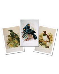 Buller's Birds Tea Towels